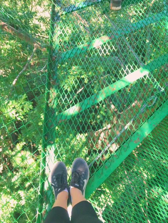 looking down at the ground from the Buena vista hanging bridges