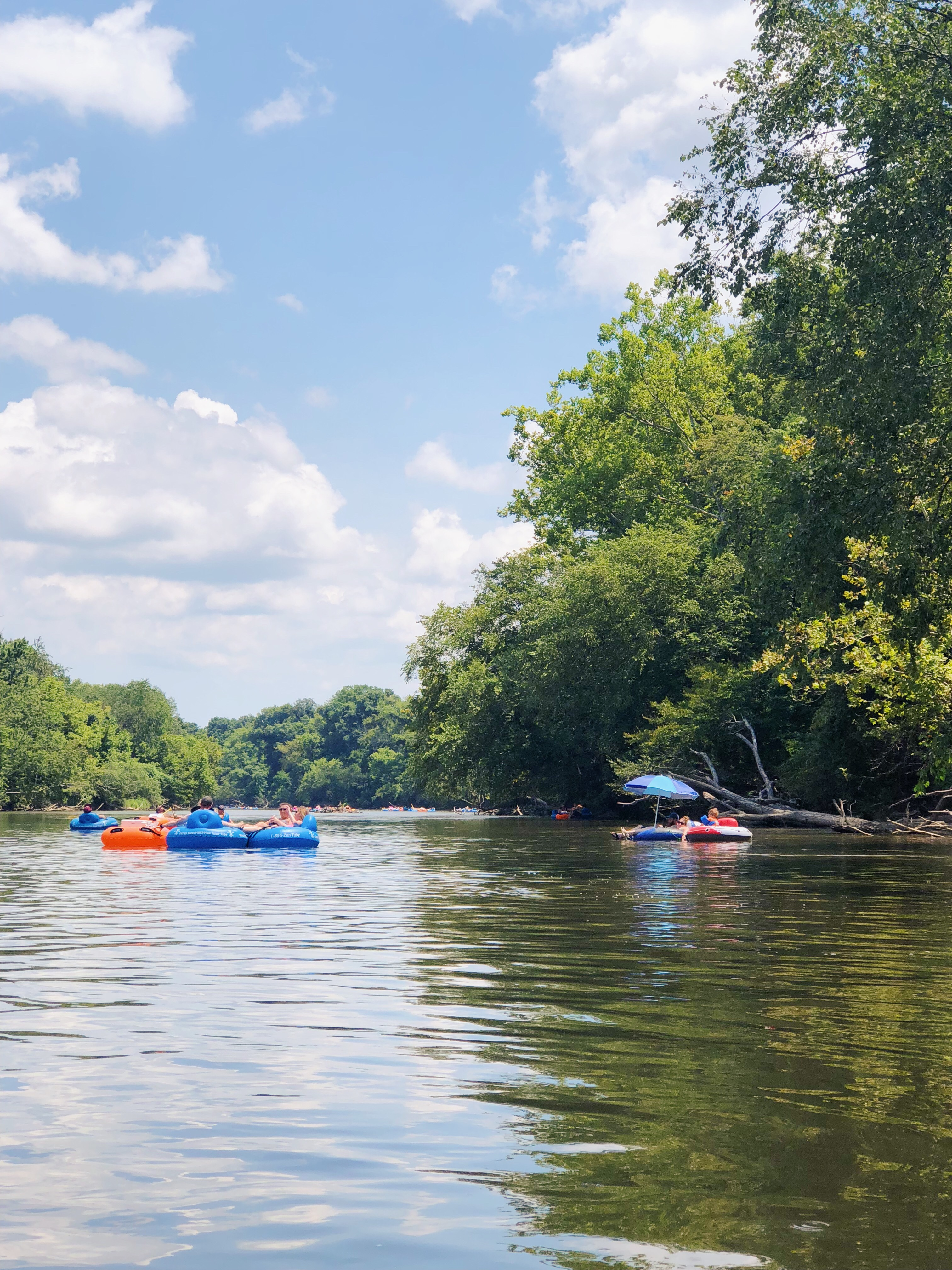 tubing the French Broad River