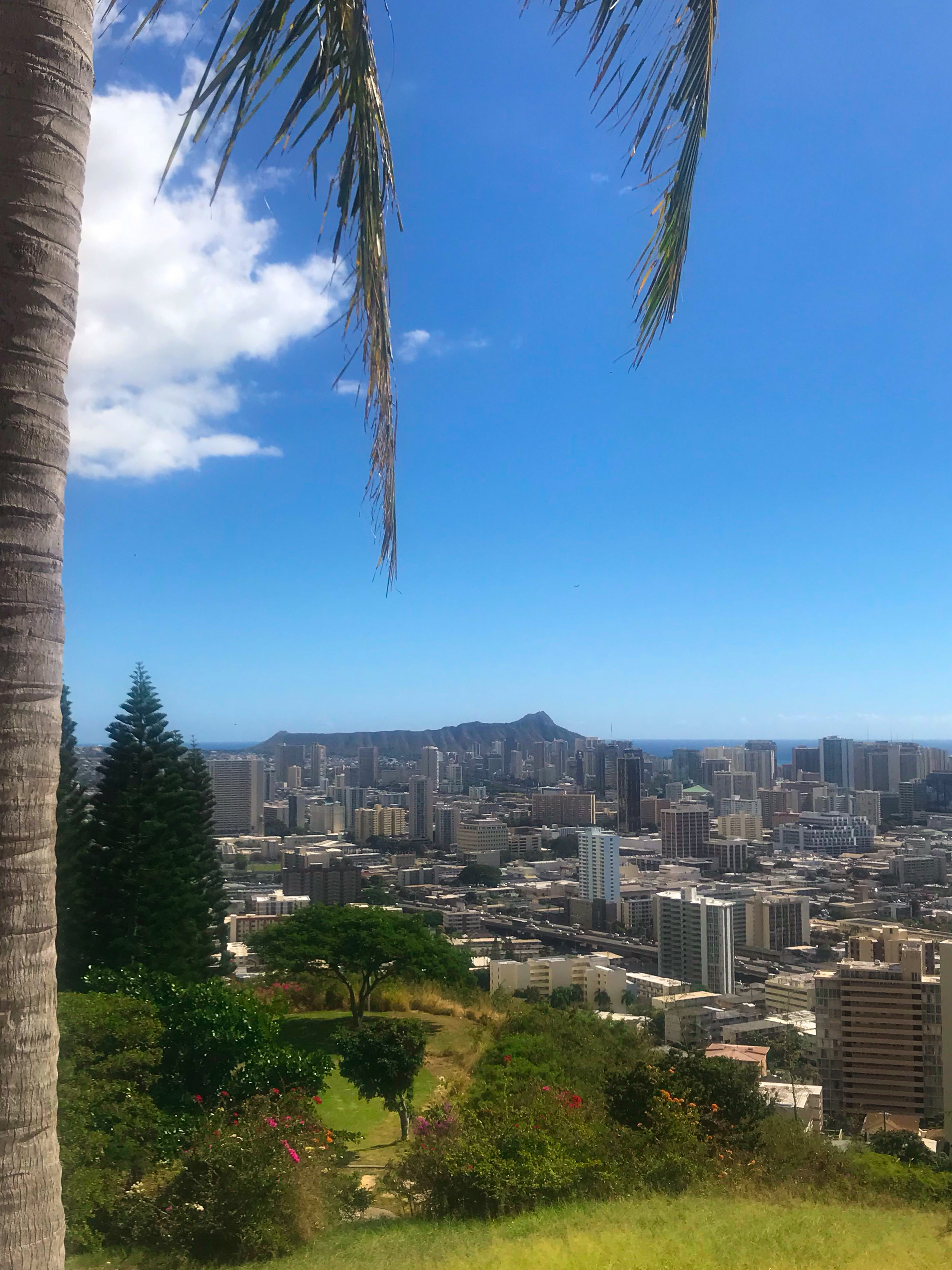view of diamondhead from the punchbowl
