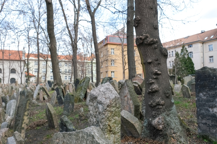 Prague Jewish Quarter Cemetery