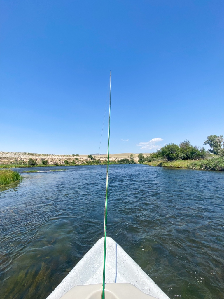 fishing the madison river