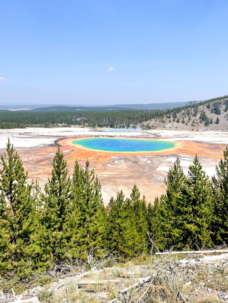 yellowstone national park grand prismatic overlook